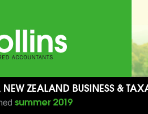 DFK Collins Summer 2019 Newsletter